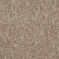 PotentialShaw No Limits Carpet Tile