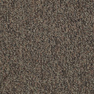BorderShaw No Limits Carpet Tile