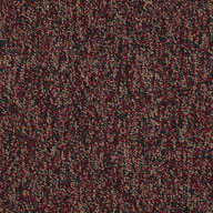 AbundanceShaw No Limits Carpet Tile