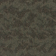 Stone's Throw Shaw Ripple Effect Carpet Tile