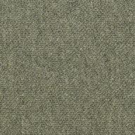 Distinguished Shaw Capital III Carpet Tile