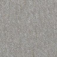 Power Play Shaw Capital III Carpet Tile