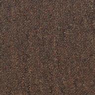 Land Slide Shaw Capital III Carpet Tile