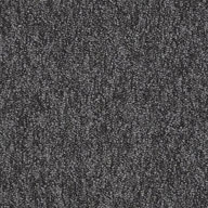 Prescribe Shaw Sound Advice Carpet Tile
