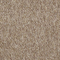 Encourage Shaw Sound Advice Carpet Tile