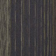 Hall Meeting Shaw Unscripted Carpet Tile
