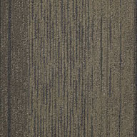 Reality TV Shaw Unscripted Carpet Tile