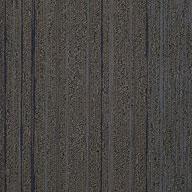 Talk Show Shaw Unscripted Carpet Tile