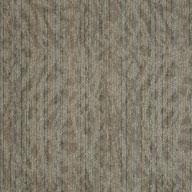 Astonish Shaw Amaze Carpet Tile