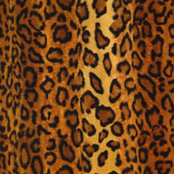 "Leopard Light5/8"" Funky Animal Print Tiles"