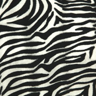 "Zebra5/8"" Funky Animal Print Tiles"
