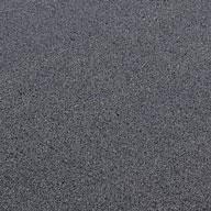 Gray Wayfarer