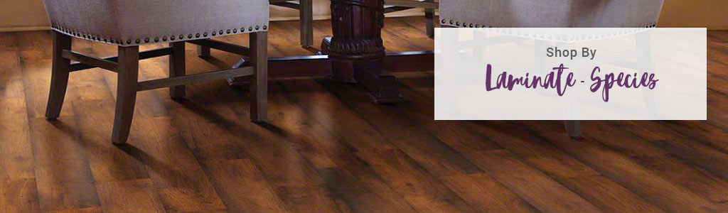 Laminate Flooring Shop By Species
