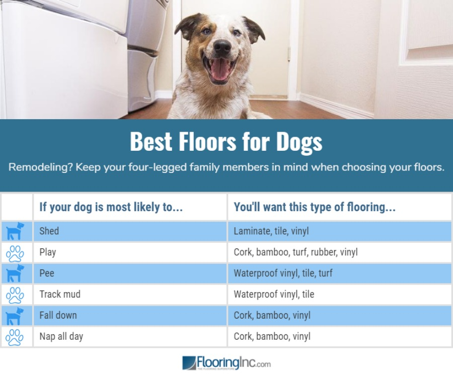 Whats The Best Flooring For Dogs Flooringinc Blog