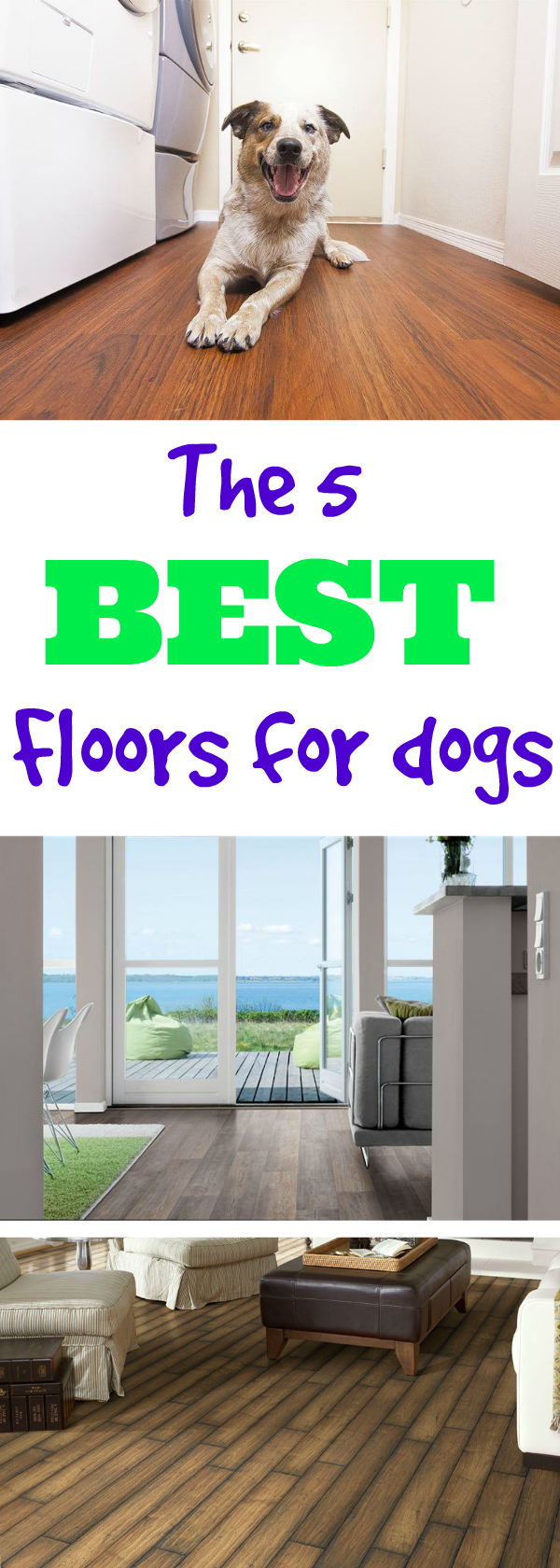 What S The Best Flooring For Dogs Flooringinc Blog