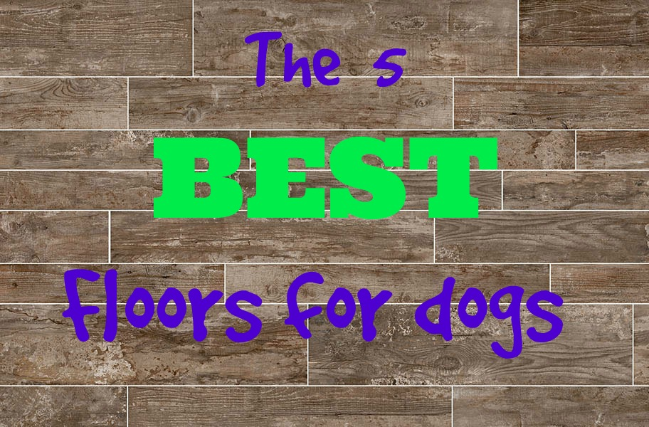 What 39 s the best flooring for dogs flooringinc blog Friendly floors