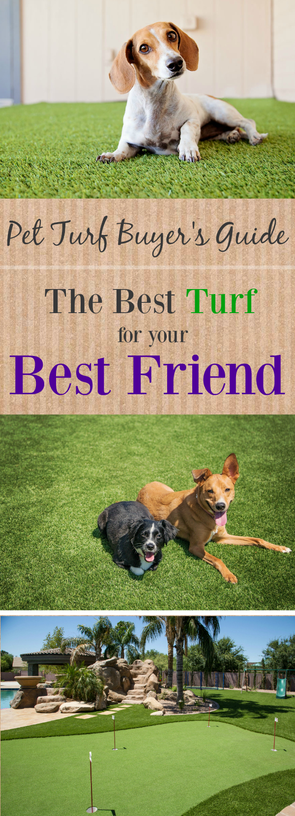 pet turf buyer s guide the best floor for your best