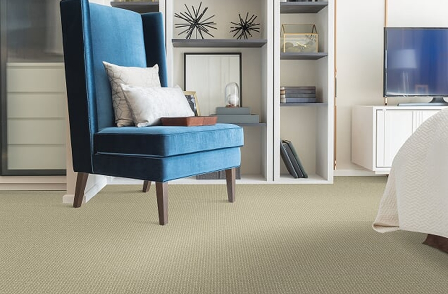 Berber Carpet Guide: barber carpet in a living room