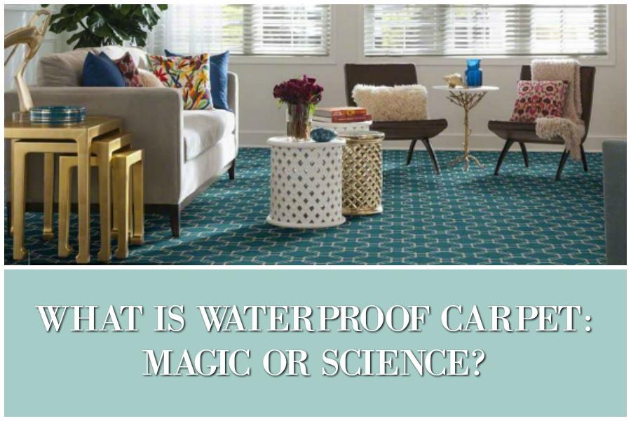 Waterproof Carpet Ideas