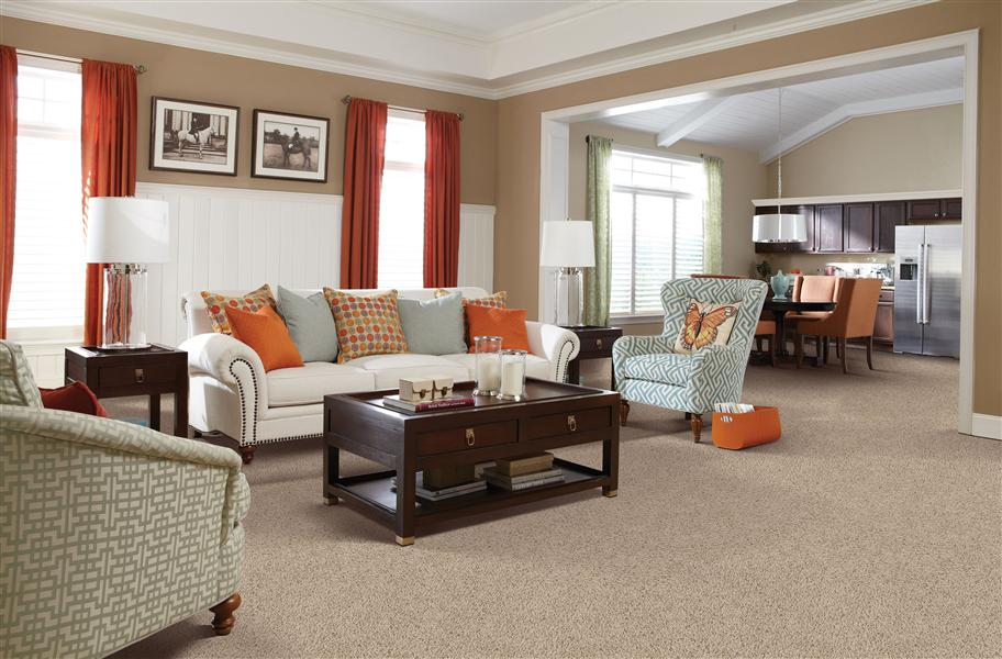 Modest Living Room Carpet Ideas Plans Free