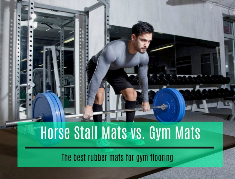 Horse stall mats vs gym floor which are better for