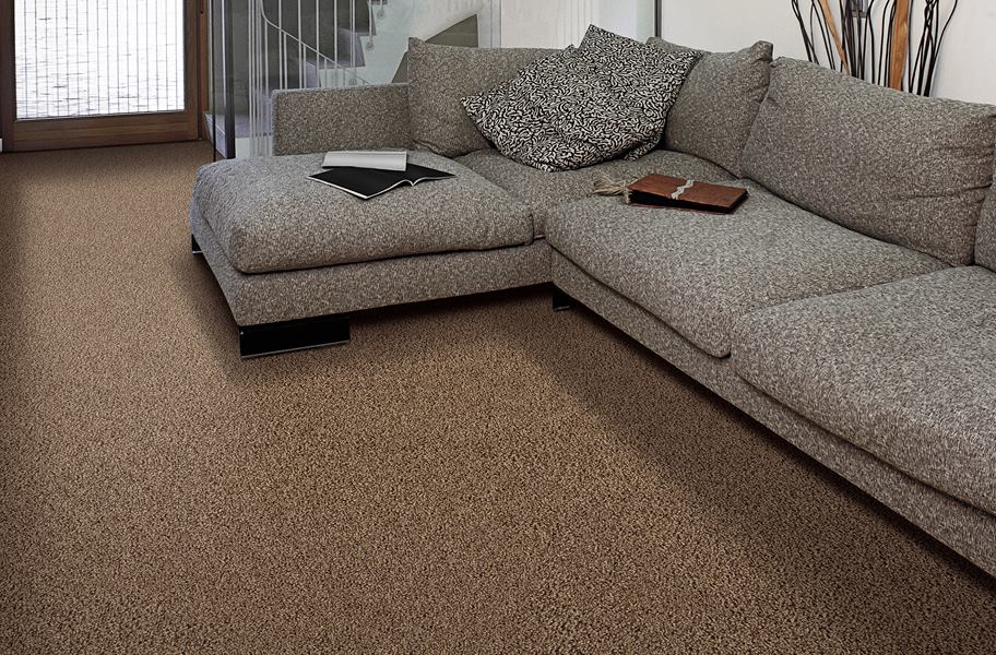 Air.o install carpet, brown with grey couch