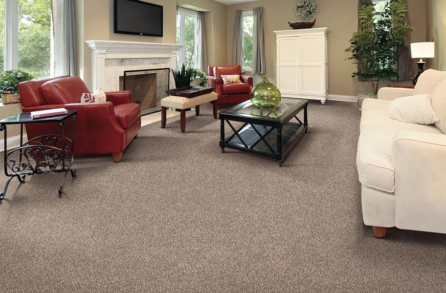 living room scene with Air.o carpet