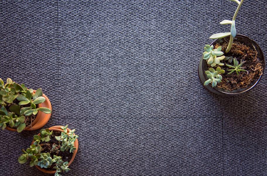 blue hobnail carpet installation