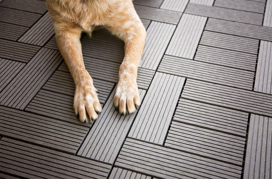 This ultimate Pet-Friendly Flooring Buying Guide will help you find a floor that is both comfortable for pets and resilient to their paws, claws and hooves - while still adding style to your space.