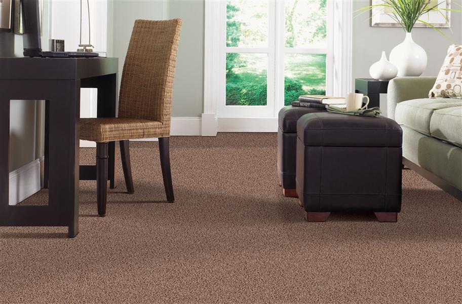 brown broadloom carpet in living room