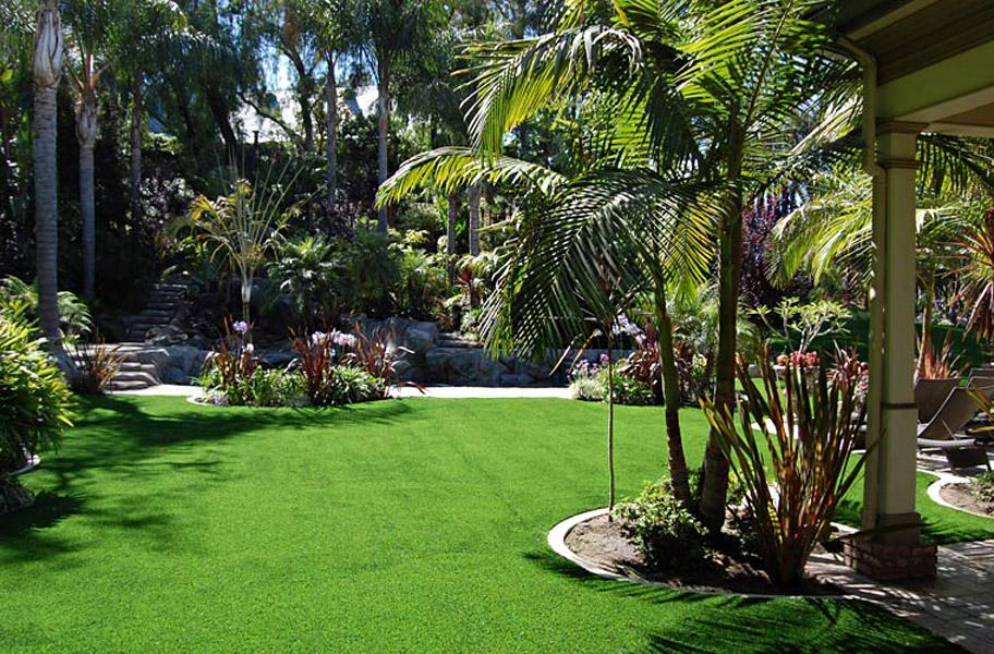 artificial grass in the backyard