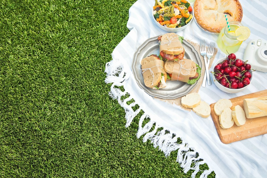 picnic spread on artificial grass