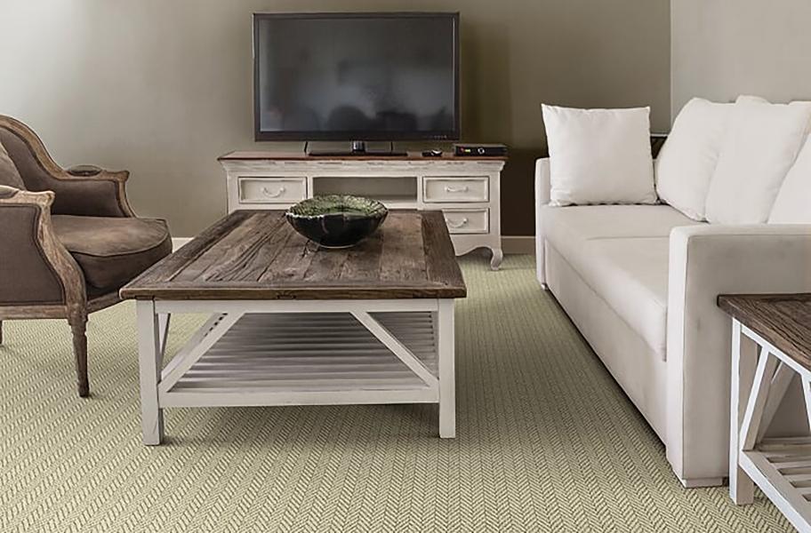 Plush Carpet: Masland Distinguished