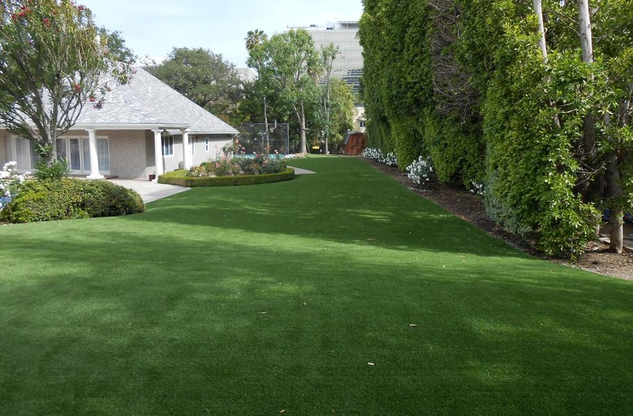 Tacoma turf roll in a front lawn.