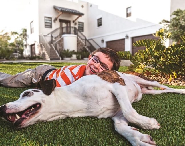 FlooringInc turf roll in a front yard with a dog and child playing