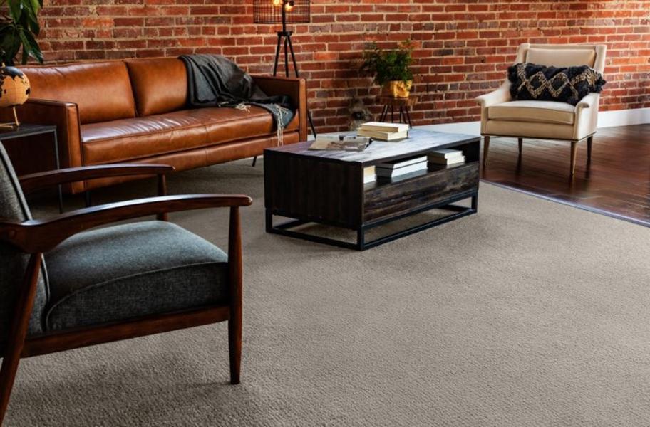 Carpet FAQ: broadloom carpet in a living room