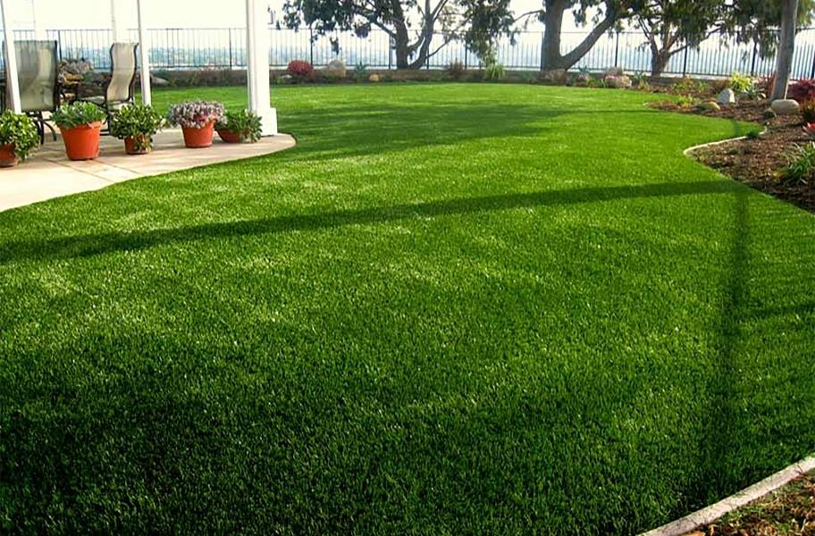 Replacing Natural Grass: Beverly Premium Turf Rolls